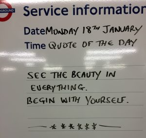 See the beauty in everything...